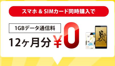 sim-sm-1