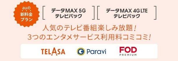 データMAXテレビプラン