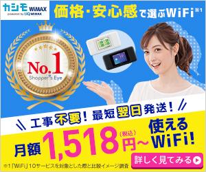 【業界最安級】カシモWiMAX